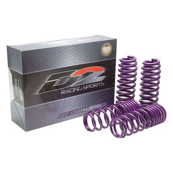 D2 Racing SP Lowering Springs (D-SP-HN-25-3)-2